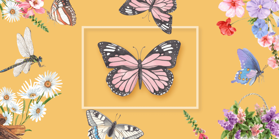 Read more about the article How To Use Butterfly Coloring Book